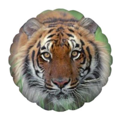 Подушка тигр