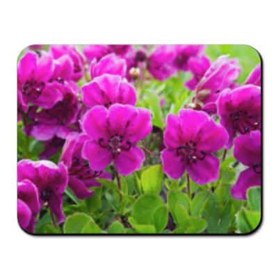 Коврик для мыши Камчатка, цветы