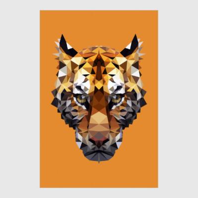 Постер Тигр / Tiger