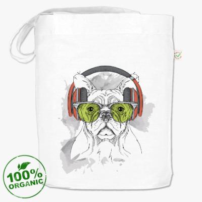 Сумка Собака в зеленых очках