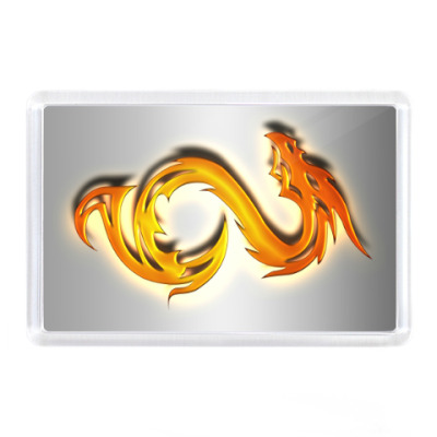 Магнит Огненный дракон