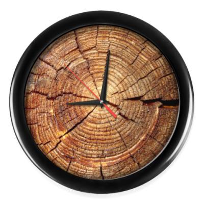 Настенные часы Срез дерева