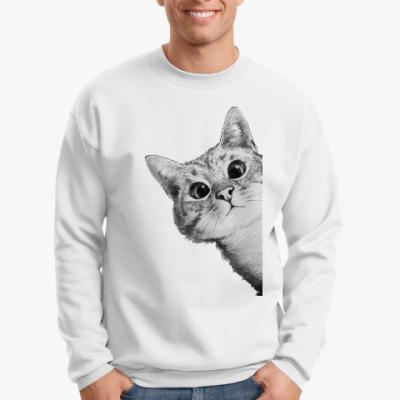 Свитшот Любопытный котик