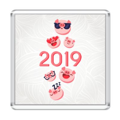 Магнит Символ 2019 года