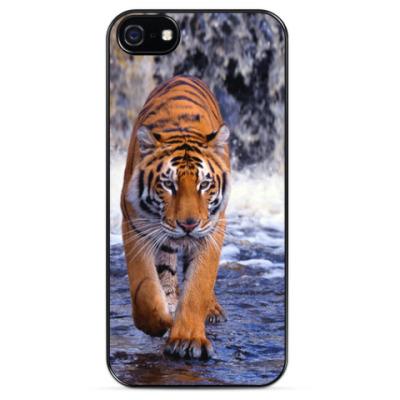 Чехол для iPhone Тигр