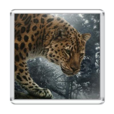 Магнит Леопард