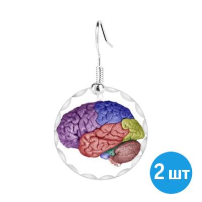 Серьги  Психолог-Мозговед