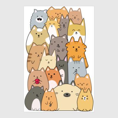 Постер Смешные коты (funny cats)