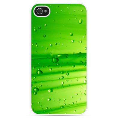 Чехол для iPhone Зелёный Лист
