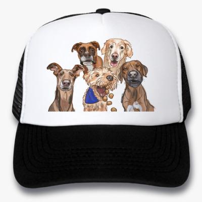 Кепка-тракер Собаки