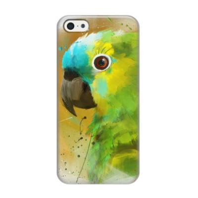 Чехол для iPhone 5/5s Попугай красками