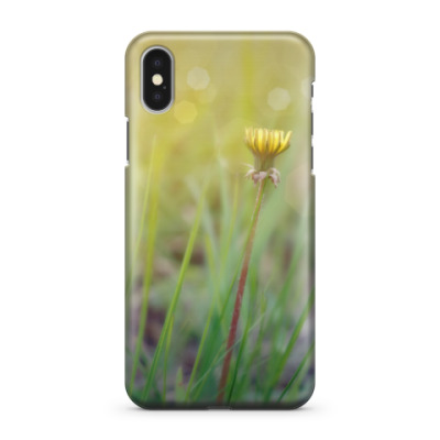 Чехол для iPhone X Цветок козлобородника