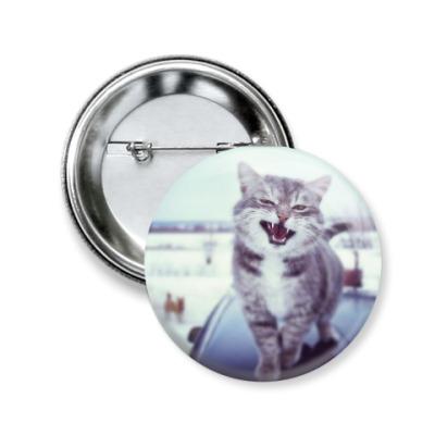Значок 50мм Смазливый кот.