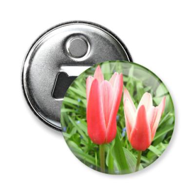 Магнит-открывашка Тюльпаны