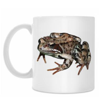 Кружка Травяная лягушка