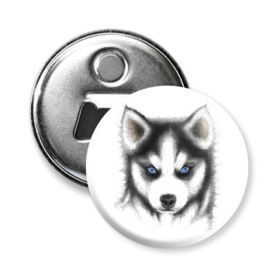 Магнит-открывашка Сибирский хаски Siberian husky