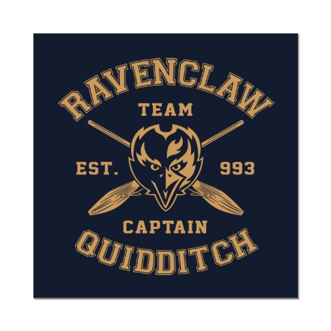 ravenclaw quidditch team - 400×400
