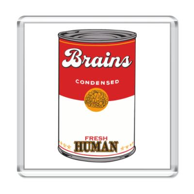 Магнит BRAINS FRESH HUMAN