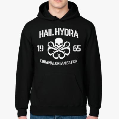 Толстовка худи Hydra