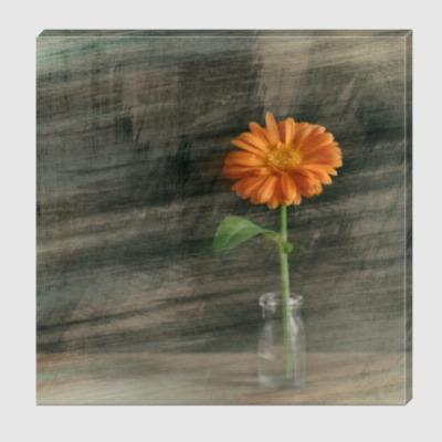 Холст Цветок календулы #2