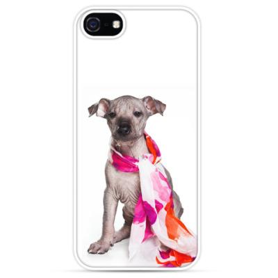 Чехол для iPhone Щенок голой собаки