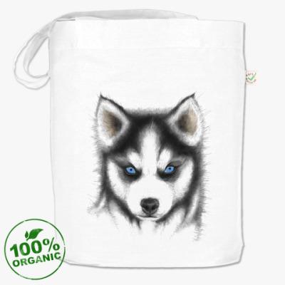 Сумка Сибирский хаски Siberian husky