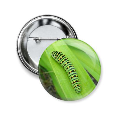 Значок 50мм Гусеница