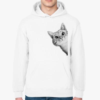 Толстовка худи Любопытный котик