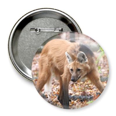 Значок 75мм Гривистый волк
