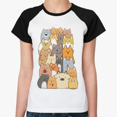 Женская футболка реглан Смешные коты (funny cats)