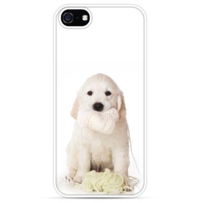 Чехол для iPhone Щенок голдена