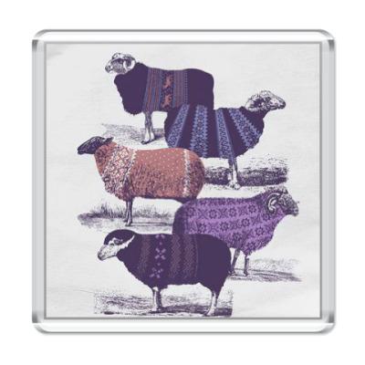 Магнит Овечки в свитерах