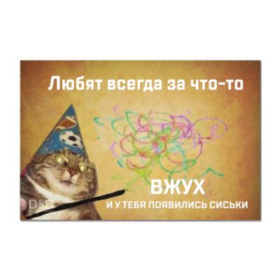 Наклейка (стикер) Котик Вжух и сиськи