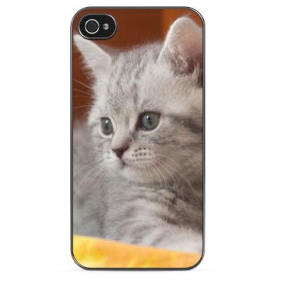 Чехол для iPhone Милый котенок