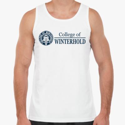 Майка Skyrim . College of Winterhold