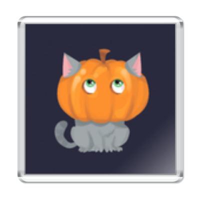 Магнит Кот в тыкве
