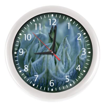 Настенные часы Spring is coming
