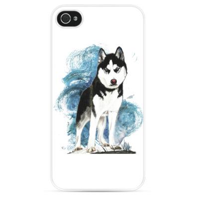 Чехол для iPhone Собака хаски. Siberian husky