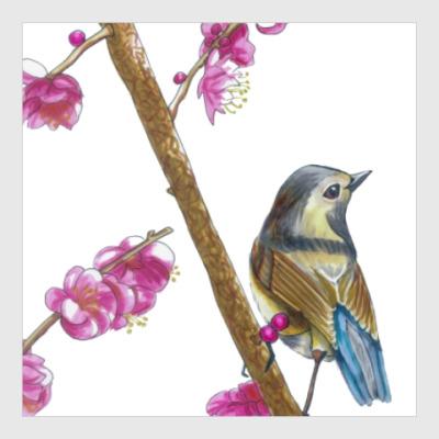 Постер Серия: птицы