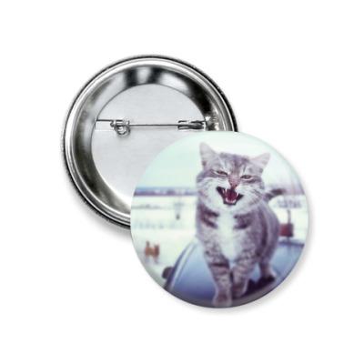 Значок 37мм Смазливый кот.