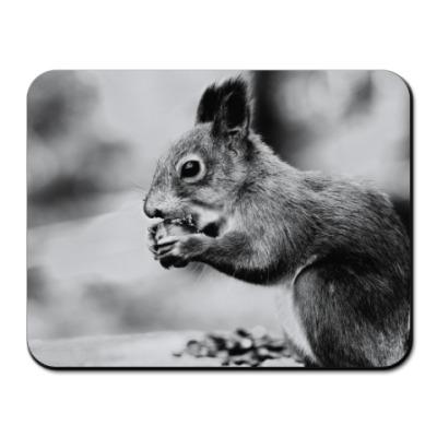 Коврик для мыши Белочка