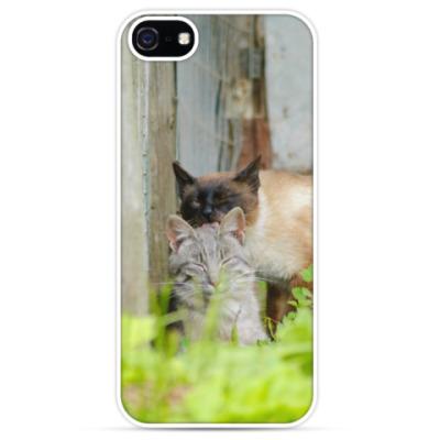 Чехол для iPhone Коты