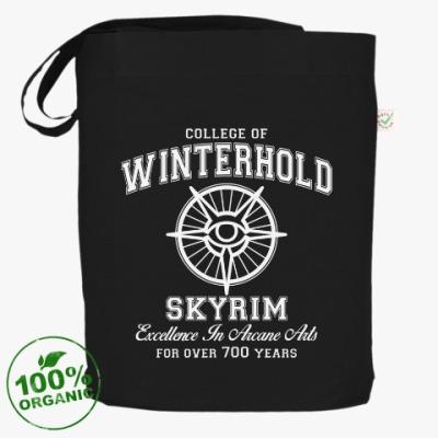 Сумка Skyrim . College of Winterhold