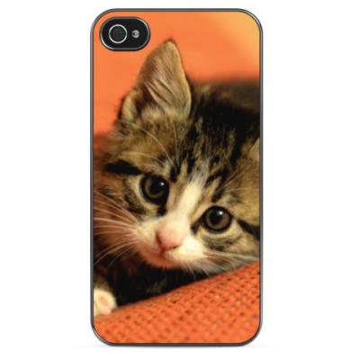 Чехол для iPhone Котенок на оранжевом