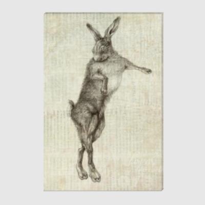 Холст Rabbit