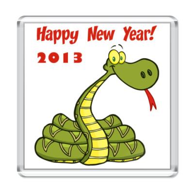 Магнит Змеиный год