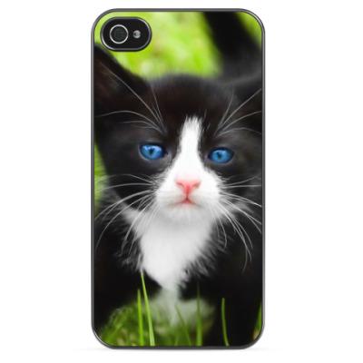 Чехол для iPhone Черно-белый котенок