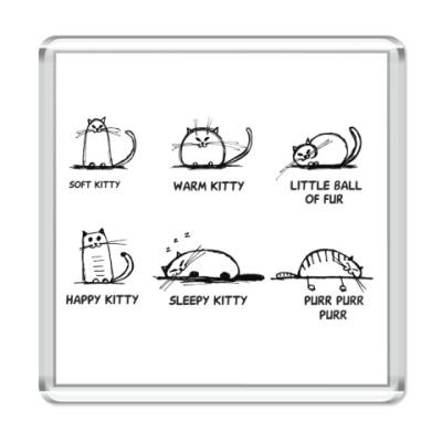 Магнит Песня Шелдона про котенка