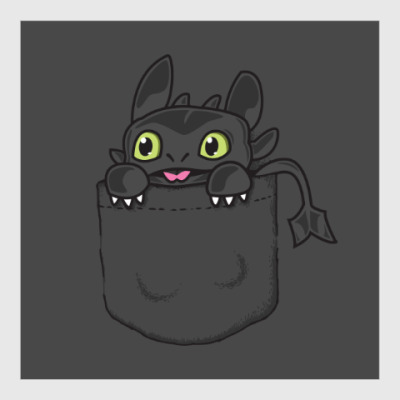 Постер Ночная Фурия в кармане