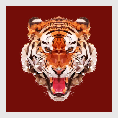 Постер Тигр